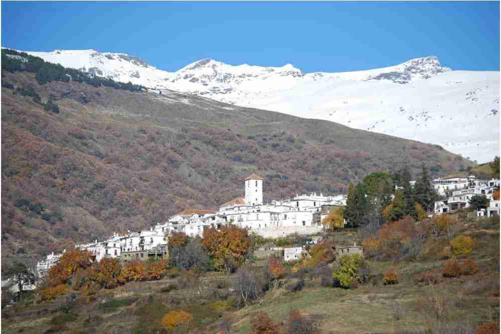Spanish_School Granada_BlaBlaCompany 37